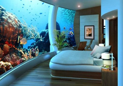aqirium room