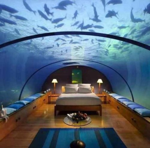 aquarium bedroom